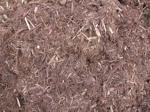 Cascade Cedar Mulch