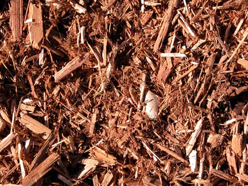 Western red cedar mulchdirect landscape supply